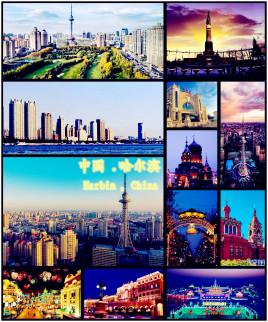 宁波到哈尔滨平房区物流专线,宁波到哈尔滨平房区物流公司,宁波到哈尔滨平房区货运专线2
