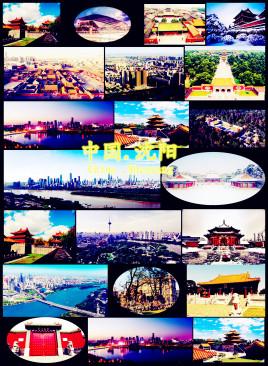 宁波到沈阳和平区物流专线,宁波到沈阳和平区物流公司,宁波到沈阳和平区货运专线2